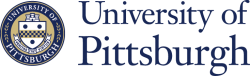 Peer learning at University of Pittsburgh